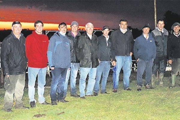 Otra gran venta de ganado lechero concretó Di Santi & Romualdo