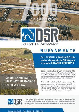DSR-exportacion7000-web-rgb